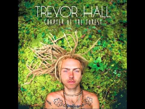 Trevor Hall - Chapter Of The Forest