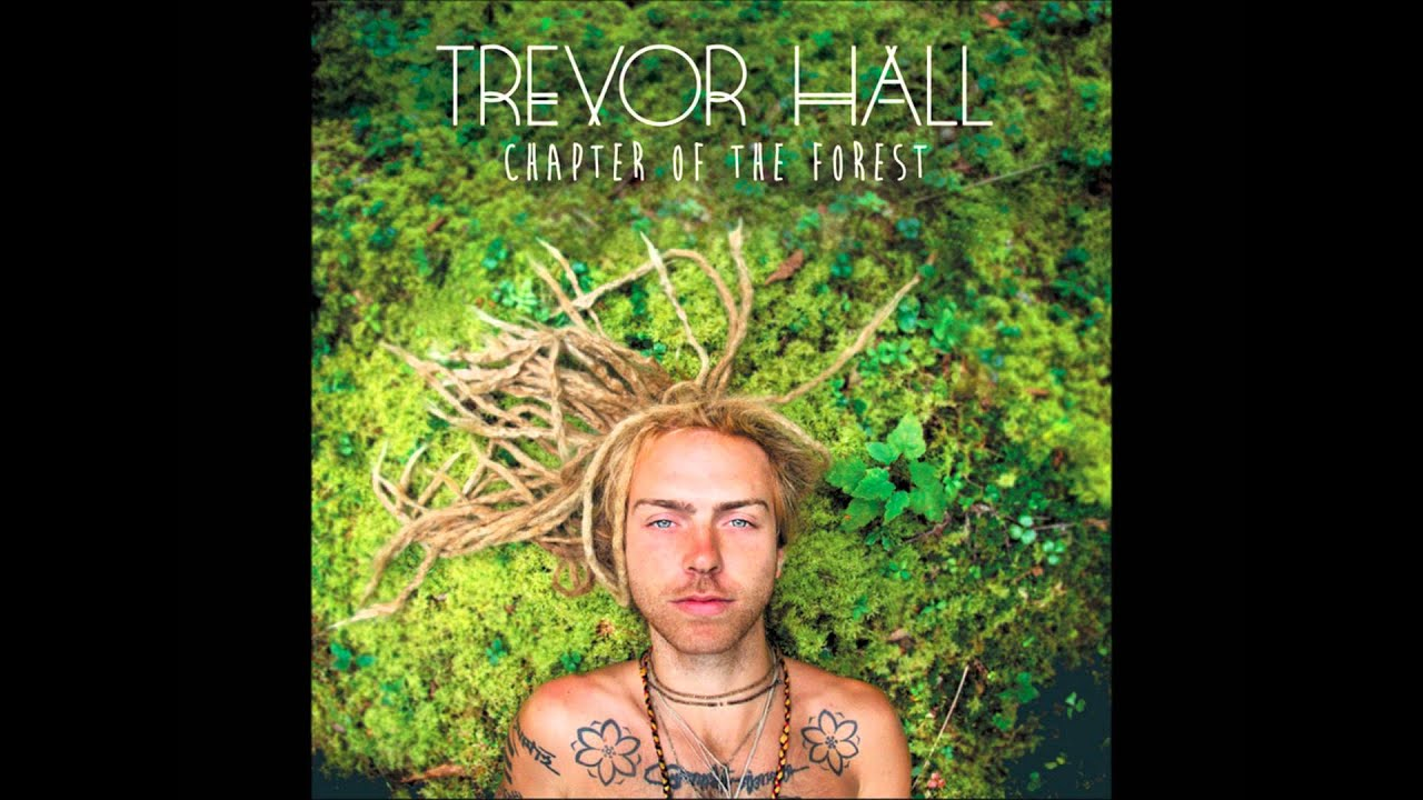 Trevor Hall Chapter Of The Forest Youtube