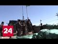 Бои за Мосул: Багдад и курды не могут договориться о едином фронте