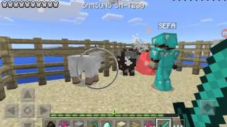 Minecraft survival mode serverli #8