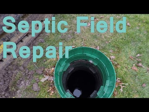 Septic Field Restoration
