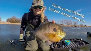 ICE FISHING with underwater camera on muddy farm ponds