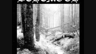 Watch Behemoth Hidden In The Fog video