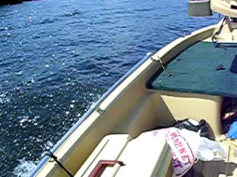 Bass hound 10 2 custom how to make do everything for Sun dolphin pro 10 2 fishing boat