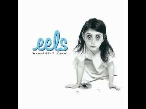 Eels - Your Lucky Day In Hell
