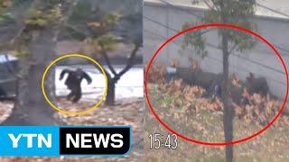 귀순 북한 병사 CCTV 공개...기적의 탈출 / YTN