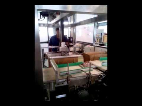 Автомат по укладке пакетов в гофрокороб