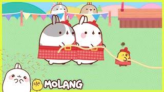 Molang - The highland games | Full Molang episodes - Cartoon for kids