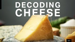 The microbial truth of how your cheese gets made