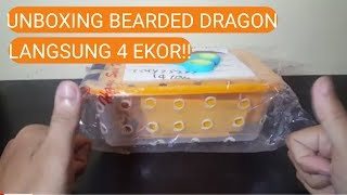 UNBOXING BABY BEARDED DRAGON INDONESIA