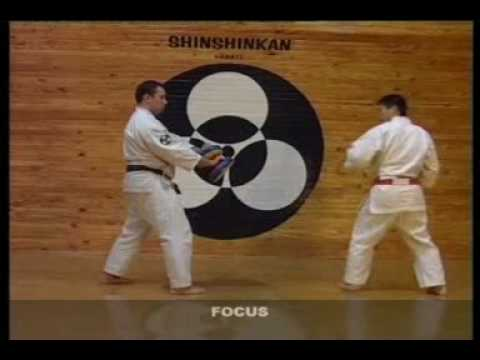 SHINSHINKAN ISSHIN RYU KARATE - FOCUS BASIC TRAINING Image 1