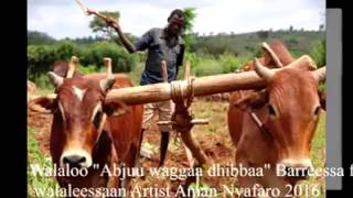 Walaloo artist Amaan Nyafaroo
