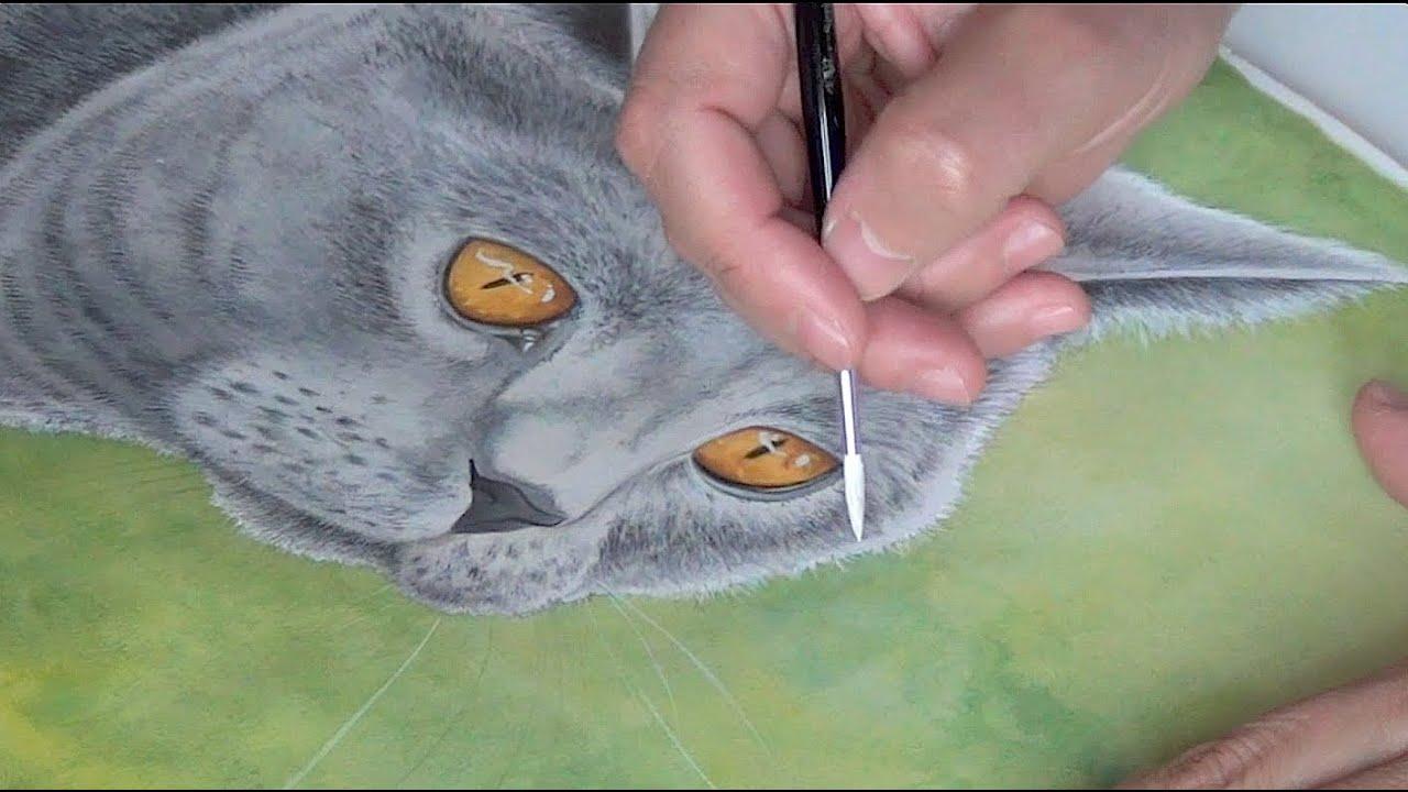 Peinture acrylique en hommage enzio le chat youtube for Peinture acrylique