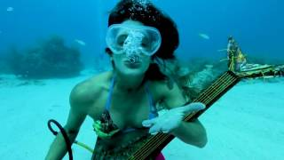 Watch An Underwater Music Festival 'Makes Waves' for Reef Protection