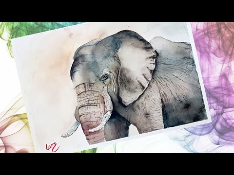 Elefánt festése akvarellel / Elephant with watercolor