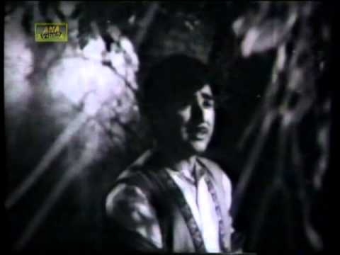 Mehdi Hassan...film Collection video