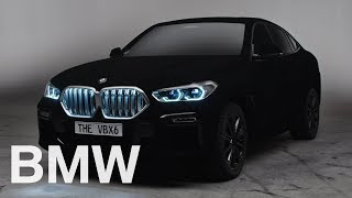 The all-new BMW X6 Series in Vantablack.