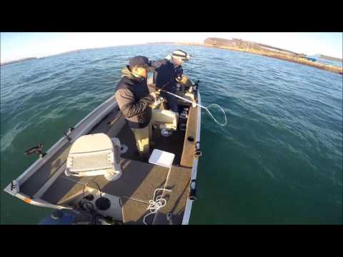 Walleye Fishing the Detroit River May 2014