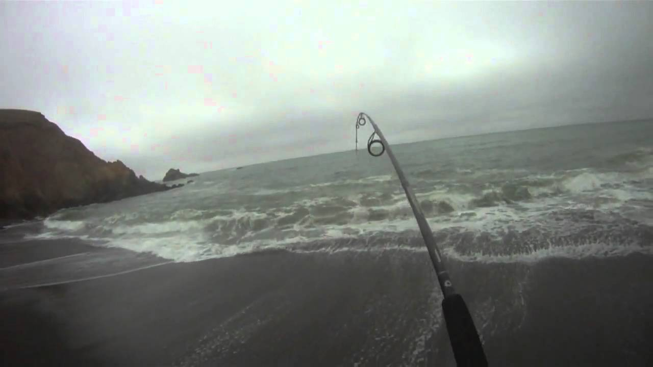 Surf fishing for striped bass on a california beach for Surf fishing northern california