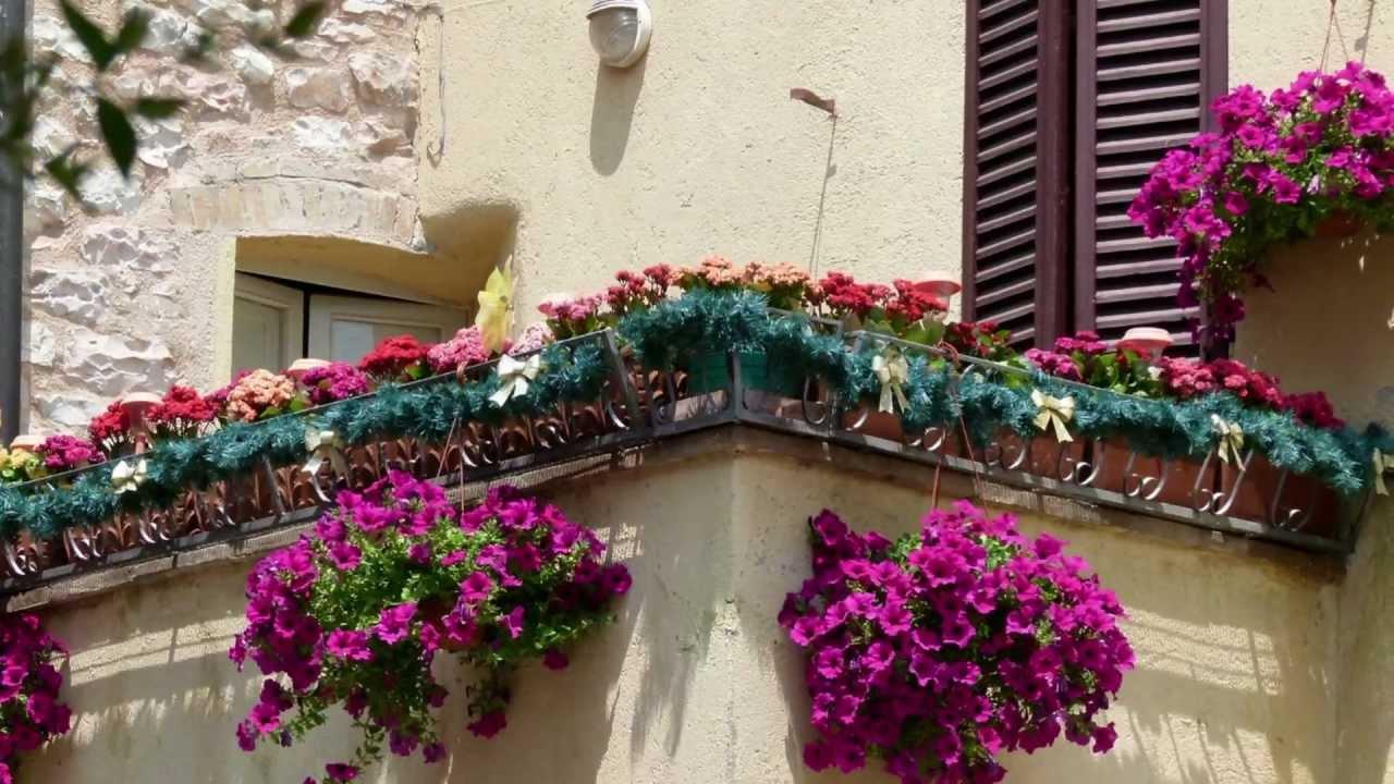 umbria spello finestre balconi vicoli fioriti full hd