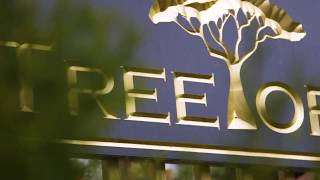 TreeTop Adventures Park Trailer