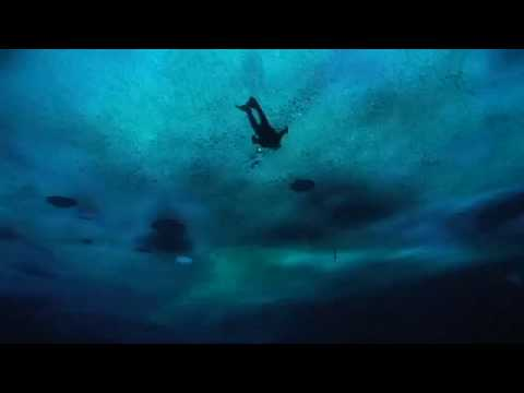 Scuba diving in antarctica!
