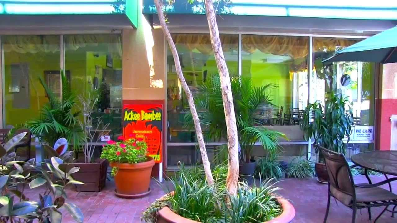 Jamaican food ackee and sastfish youtube for Ackee bamboo jamaican cuisine los angeles ca