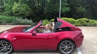 Hello, Sunshine: 2020 Mazda Miata RF Edition