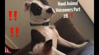 Hood Animal Voiceovers Part 28 ‼️
