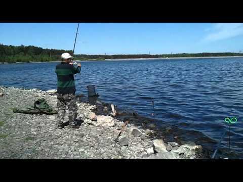 ловля риби острогою