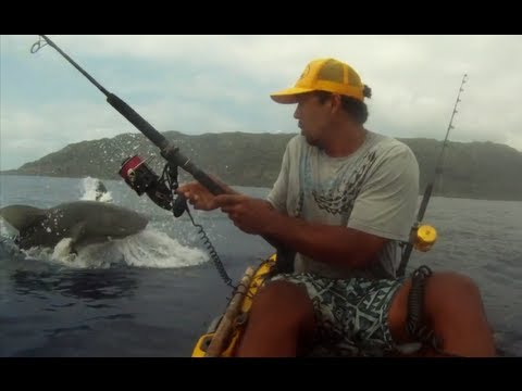 Shark Attacks Kayaker's Fish