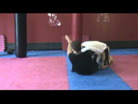 Butterfly Guard Sweep - Front Roll Image 1