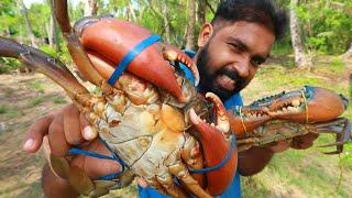 ഒന്നര കിലോ ഞണ്ട് കറി 😋 ഞണ്ട് ഇങ്ങനെ ഒന്ന് ഉണ്ടാക്കി നോക്കണം   Crab Cooking   Omkv Cooking