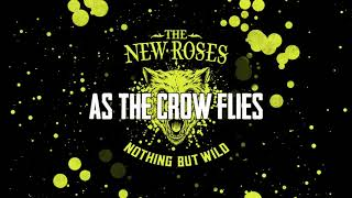 "THE NEW ROSES - ""Nothing But Wild"" Track by Track Pt 3 