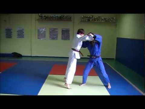 Technique : Harai-Goshi Image 1