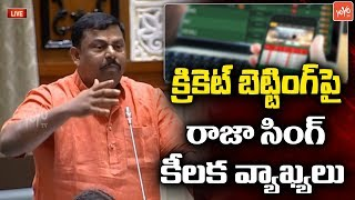 Raja Singh Comments On Cricket Bettings InTelangana Assembly | BJP | KTR | YOYOTV