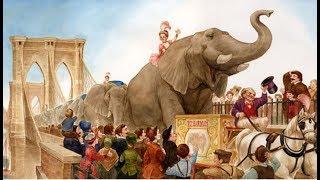Twenty One Elephants