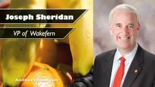 Wakefern Promotes Four