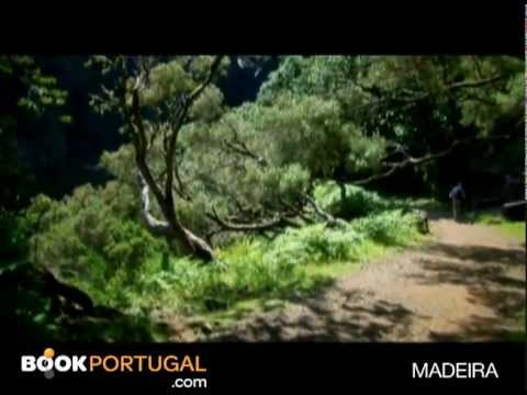 Madeira Island: Activities & Lifestyle