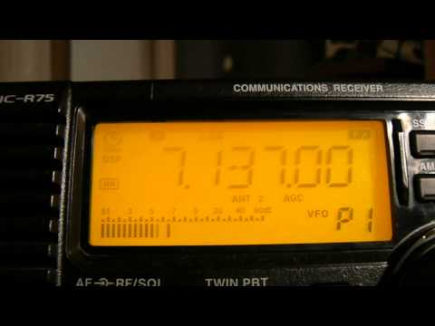 7137khz,Ham Radio,TM6LL(France) 22-20UTC.