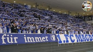 FC Magdeburg Ultras supporting their U-15 team