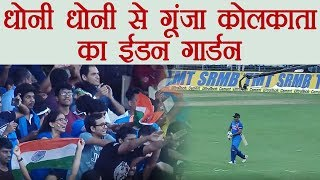 Download India vs Australia 2nd ODI : MS Dhoni gets standing ovation from Fans at Eden Gardens 3Gp Mp4