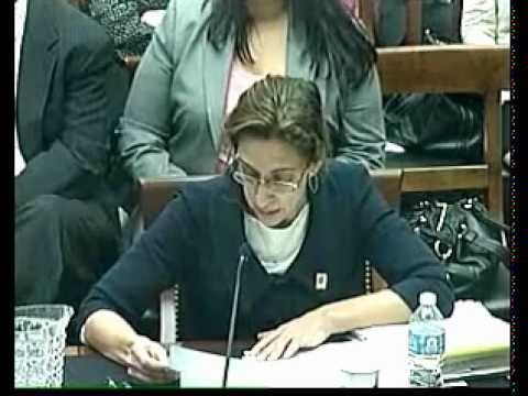 Statements of Witnesses at Immigration Detention Standards Hearing