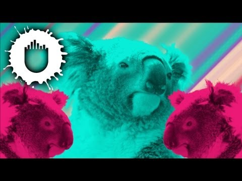 Pink Is Punk - Koala (Official Video)