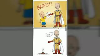 Only One Punch Man Fans Find it Funny- Saitama funny memes