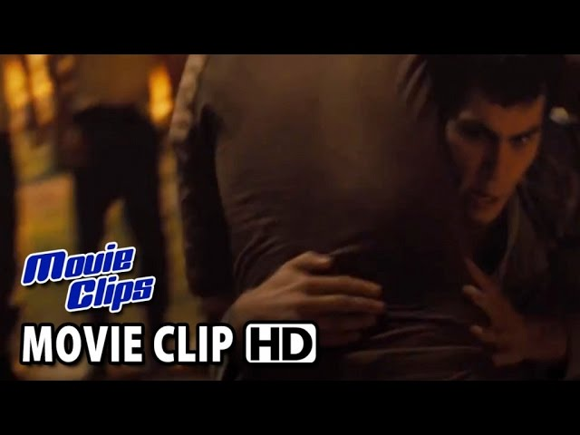 THE MAZE RUNNER 'Fight' Official Movie Clip (2014) HD