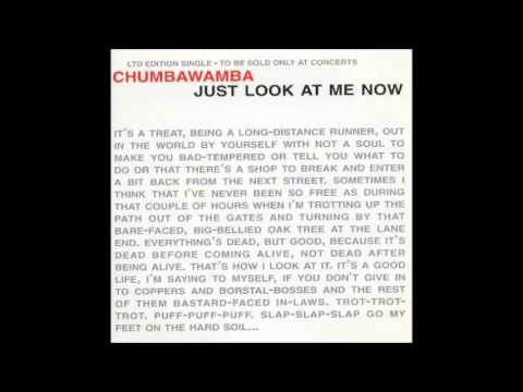 Chumbawamba - Nothing Knocks Me Over