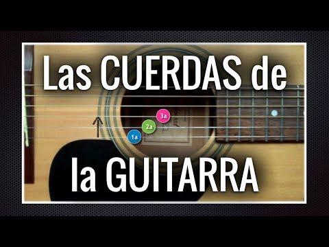 Las Cuerdas De La Guitarra ♪ Aprendiz De Guitarra TV