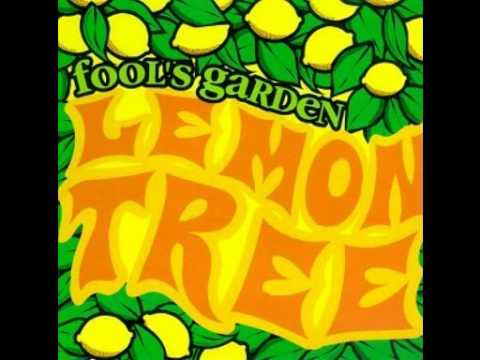 Fools garden lemon tree