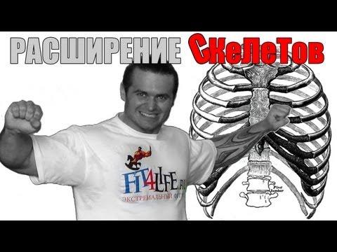 РАСШИРЕНИЕ СКеЛеТов :-))) костяка плеч и грудной клетки.